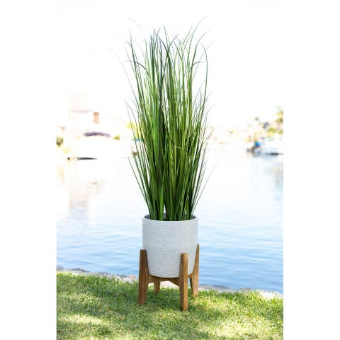 "50"" Onion Grass in 10"" Cathedral Ceramic Pot"