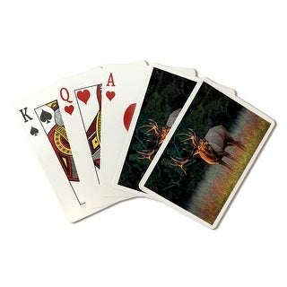 Elk Calling - Lantern Press Photography (Playing Card Deck - 52 Card Poker Size with Jokers)