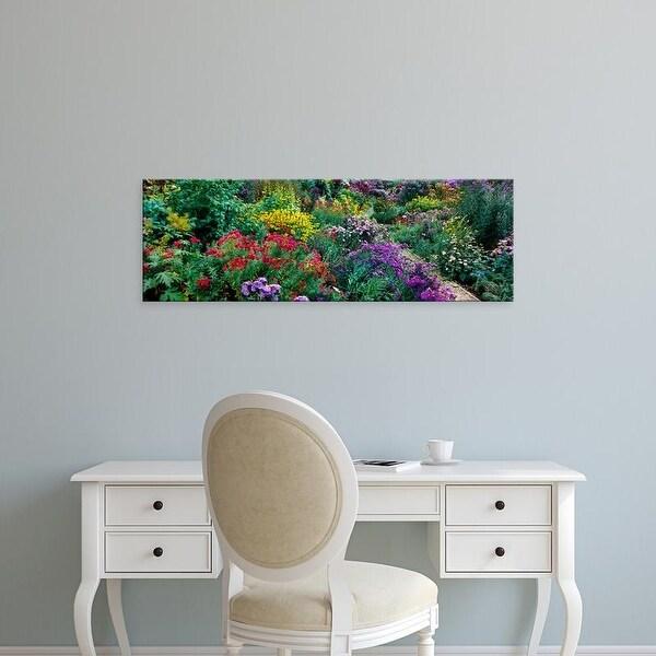 Easy Art Prints Panoramic Images's 'European Michaelmas