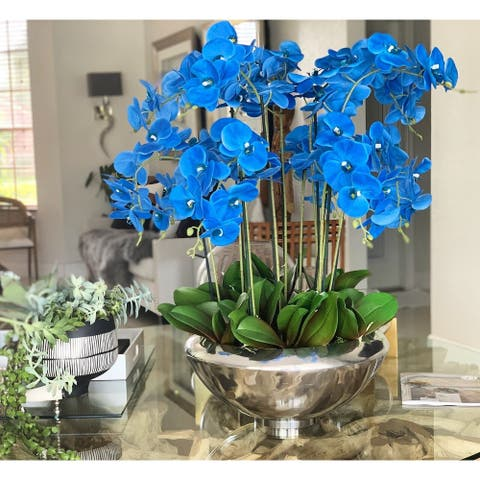 Avenue bowl with blue Phalaenopsis orchids