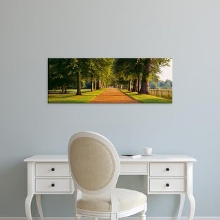 Easy Art Prints Panoramic Images's 'Trees in a park, Oxford, Oxfordshire, England' Premium Canvas Art