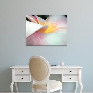 Easy Art Prints Jim Christensen's 'Flowers II' Premium Canvas Art
