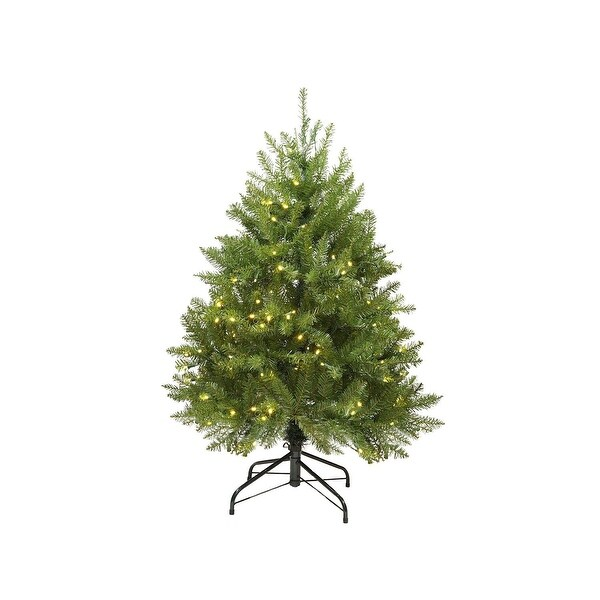 4' Pre-Lit Northern Pine Full Artificial Christmas Tree - Warm Clear LED Lights - green