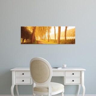 Easy Art Prints Panoramic Images's 'Rural Tree Lined Road, Belgium' Premium Canvas Art