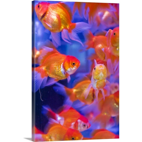 Orange Blue Bubble Giclee Canvas Abstract Colour Picture Wall Art