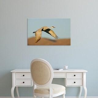 Easy Art Prints Jaynes Gallery's 'Sandhill Crane In Flight' Premium Canvas Art