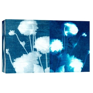 "PTM Images 9-103690  PTM Canvas Collection 8"" x 10"" - ""Cyanotype K"" Giclee Flowers Art Print on Canvas"