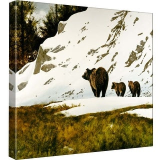 """PTM Images 9-97791  PTM Canvas Collection 12"""" x 12"""" - """"Grizzly Mother"""" Giclee Bears Art Print on Canvas"""