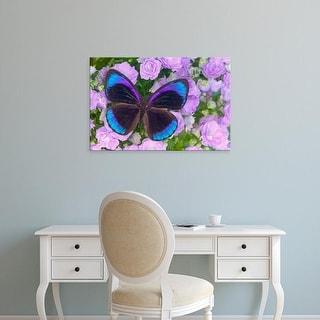 Easy Art Prints Darrell Gulin's 'Blue And Black Butterfly' Premium Canvas Art