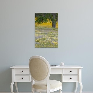 Easy Art Prints Terry Eggers's 'Lone Oak And Spring Wildflowers' Premium Canvas Art