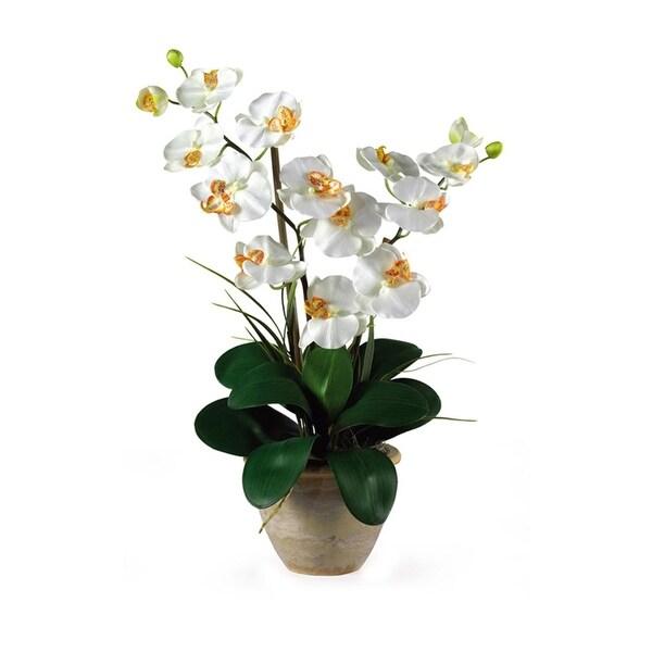 Nearly Natural Double Stem Phalaenopsis Silk Flower Arrangement