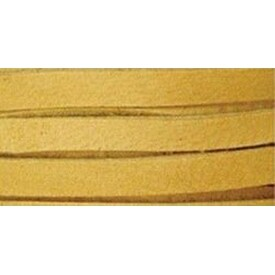 "Gold - Deerskin Lace .1875""X2yd Packaged"