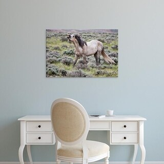 Easy Art Prints Larry Ditto's 'Wild Horses' Premium Canvas Art