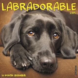 2019 Labradorable Wall Calendar, Labrador Retriever by Willow Creek Press