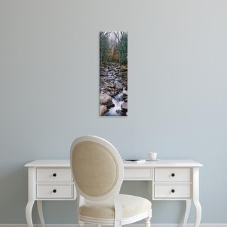 Easy Art Prints Panoramic Images's 'Water flowing in the forest, Adirondack Mountains, New York State, USA' Canvas Art