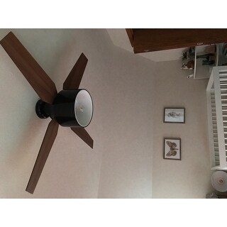 Hunter fan cranbrook collection gloss black metal and plastic 52 hunter fan cranbrook collection gloss black metal and plastic 52 inch ceiling fan with 4 mozeypictures Image collections