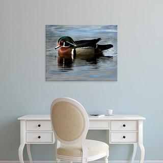 Easy Art Prints Peter Hawkins's 'Wood Duck' Premium Canvas Art