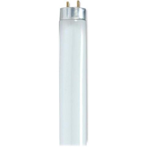 Satco 32-watt 48 T8 Fluorescent Bulbs