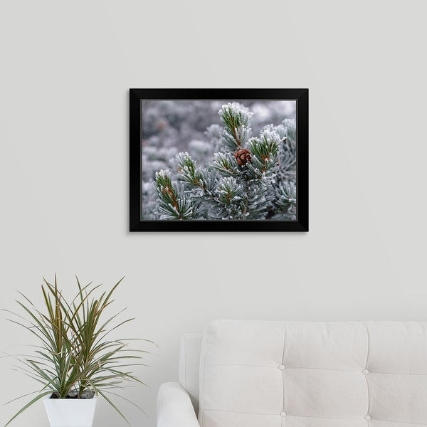 """""""Frost covered branches"""" Black Framed Print"""