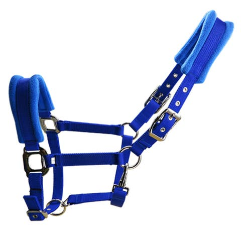 6mm Thick Horse Halter With Cushion Thick Metal Buckles 3 Slots - Blue - XL