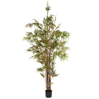 6.7' Black Japanese Potted Bamboo Tree - N/A