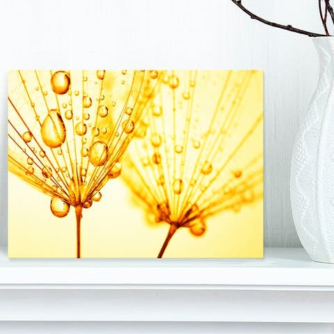 Designart 'Dandelion Seeds with Water Drops' Extra Large Floral Canvas Art
