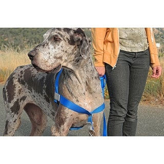 The Walk Your Dog With Love Big Dog Broadband Harness