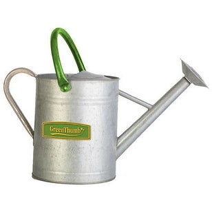 Panacea Products 203994 2 gal Green Thumb Vintage Galvanized Watering Can