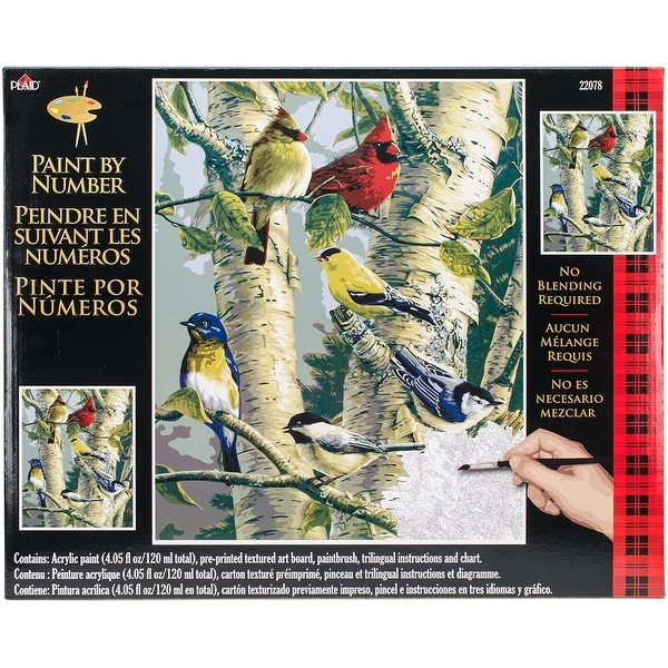 """Paint By Number Kit 16""""X20""""-Song Birds"""