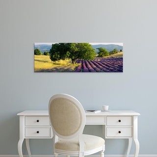 Easy Art Prints Panoramic Images's 'Lavender flowers in a field, Drome, Provence, France' Premium Canvas Art