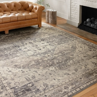 Alexander Home Venetian Printed Distressed Area Rug