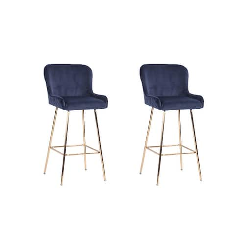 Ace Casual Furniture Pagel Counter Stool with Metal Legs (Set of 2)