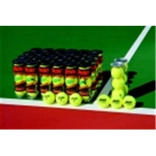 Penn Championship Tennis Balls, Pack - 3
