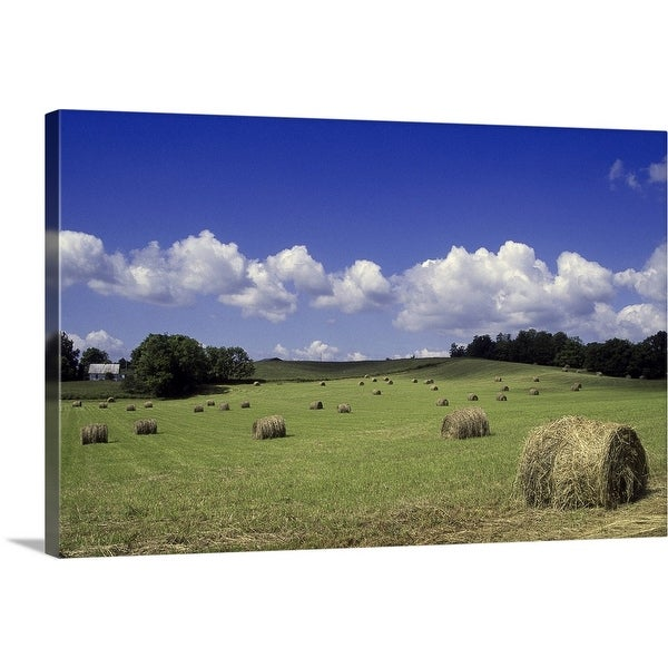 """Hay rolls in field, Kentucky"" Canvas Wall Art"