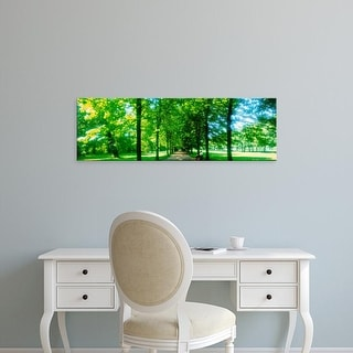 Easy Art Prints Panoramic Images's 'Tree