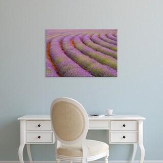 Easy Art Prints Jaynes Gallery's 'Rows Of Lavender' Premium Canvas Art