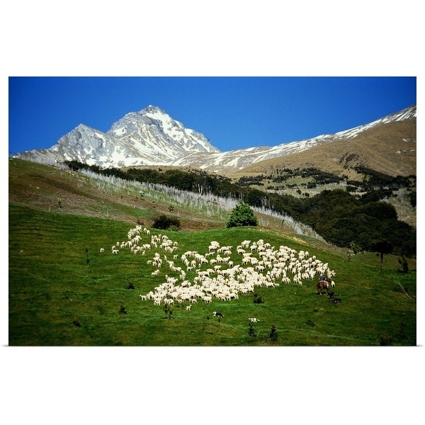 Shop Shepherd with flock of sheep out in the mountain range