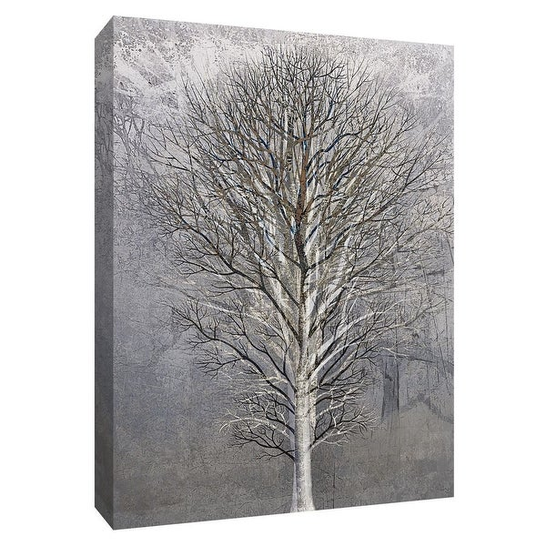 """PTM Images 9-148472 PTM Canvas Collection 10"""" x 8"""" - """"Silver Tree III"""" Giclee Trees Art Print on Canvas"""