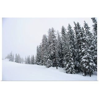 """""""Snow covered pine trees up a slope"""" Poster Print"""