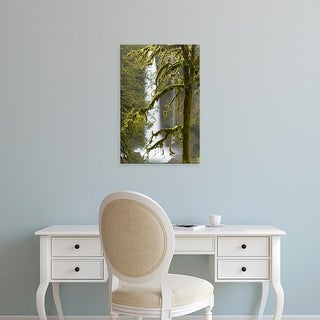 Easy Art Prints William Sutton's 'A Moss Covered Tree' Premium Canvas Art