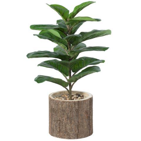 Wooden Stump Tree Branch with Bark Succulent Planter Pot Flower Shelf