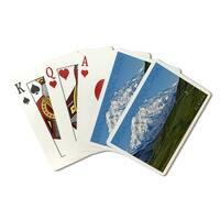 Denali Park, AK - Mountain View - LP Photo (Poker Playing Cards Deck)