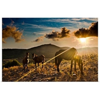 """""""Horses grazing during sunset in Tolfa."""" Poster Print"""