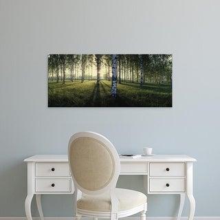Easy Art Prints Panoramic Images's 'Birch trees by the Vuoksi River, Imatra, Finland' Premium Canvas Art