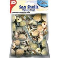 Small-Mixed Sea Shells 8Oz
