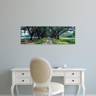 Easy Art Prints Panoramic Images's 'View of trees along the road, South Carolina, USA' Premium Canvas Art