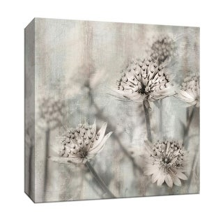 """PTM Images 9-147356  PTM Canvas Collection 12"""" x 12"""" - """"Natural Ones II"""" Giclee Flowers Art Print on Canvas"""