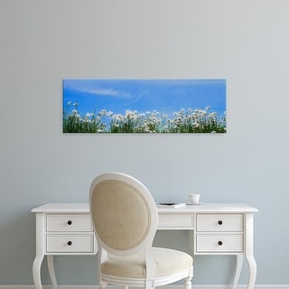 Easy Art Prints Panoramic Images's 'Poppy field in bloom, Tuscany, Italy' Premium Canvas Art