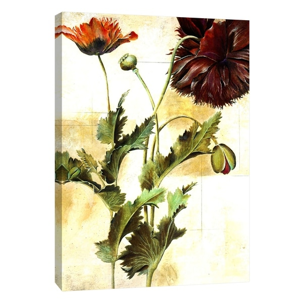 "PTM Images 9-105265 PTM Canvas Collection 10"" x 8"" - ""Poet Florals"" Giclee Daisies Art Print on Canvas"