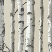 Brewster 2532-20418 Irvin Grey Birch Tree Wallpaper - irvin grey birch tree - N/A